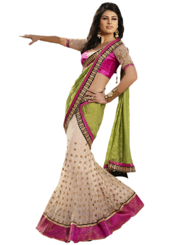 Net And Georgette Embroidered Saree image